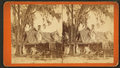 Residence of Harriet Beecher Stowe, Florida, from Robert N. Dennis collection of stereoscopic views 4.png
