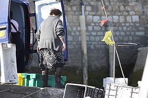 Retour de la pêche à la seiche du fileyeur Jason IV (54).JPG