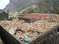 Ribeira Principal-Séchage du maïs.jpg