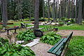 Ritsiku kalmistu 02.JPG
