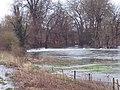 River Avon at Ibsley - geograph.org.uk - 320264.jpg