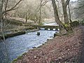 River Bradford in late winter - geograph.org.uk - 1184133.jpg