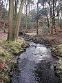 River Conder, Gibson Wood - geograph.org.uk - 1166917.jpg