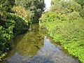 River Lee in Harpenden - geograph.org.uk - 558743.jpg