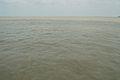 River Padma - Paturia-Daulatdia - 2015-06-01 2798.JPG
