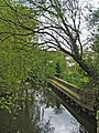 River at Mill Green, Hertfordshire - geograph.org.uk - 336457.jpg