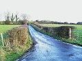 Road at Drumaherney - geograph.org.uk - 1634988.jpg