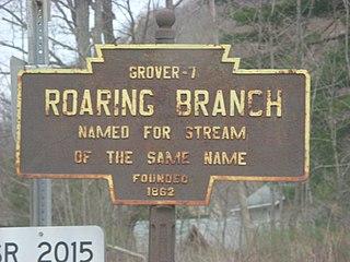 Roaring Branch, Pennsylvania Unincorporated community in Pennsylvania, United States