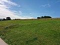 Rock-cornwall-england-tobefree-20150715-132741.jpg