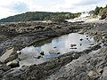 Rockpool near Wiseman's Bridge - geograph.org.uk - 569915.jpg