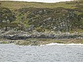 Rocky shoreline between Portrigh and Cruban Rock - geograph.org.uk - 56499.jpg