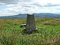 Rothmaise trig point in summer - geograph.org.uk - 205342.jpg