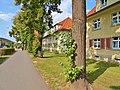 Rottwerndorfer Straße Pirna (44509996872).jpg