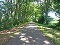 Route cyclable entre Mont-de-Marsan et Villeneuve de Marsan - panoramio (1).jpg