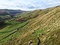 Rowlee Pasture - geograph.org.uk - 1047835.jpg