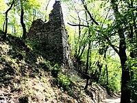 Ruševina gradu Radeče 2011.JPG