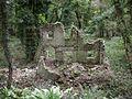 Ruin dwarfed by trees - geograph.org.uk - 277998.jpg