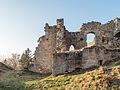 Ruine-Rauheneck-270216-2278381.jpg