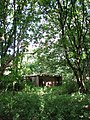 Ruined building in woodland surrounding Haveringland Hall - geograph.org.uk - 552595.jpg