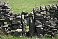 Ruined squeeze stile - geograph.org.uk - 1357560.jpg