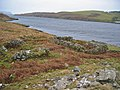 Ruins on the south shore of Loch Beag - geograph.org.uk - 671457.jpg