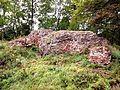 Ruiny Zamku w Wąbrzeźnie 2.jpg