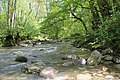 Ruisseau de Chênex - panoramio.jpg