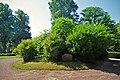Runsten runinskrift DR366 Lösens kyrka Blekinge.jpg
