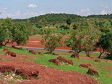 Sahel / Interior | Tracing African Roots