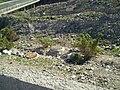 San Bartolomé de Tirajana, Las Palmas, Spain - panoramio (16).jpg