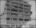 San Pedro, California. Trucks were jammed high with suitcases, blankets, household equipment, garde . . . - NARA - 536782.tif
