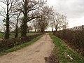 Sandy Lane, near Alne - geograph.org.uk - 366571.jpg