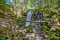 Sankt Blasien Windbergwasserfall Bild 2.jpg