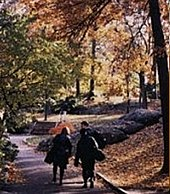 new york university school of social work wikipedia