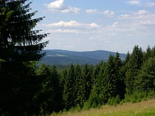 Großer Finsterberg peak in the Thuringian Forest