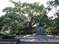 Sculpture of Hachisuka Iemasa and grand camphor tree in Tokushima Castle.JPG