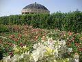 Shaheed Benazir Bhutto Park - panoramio (21).jpg