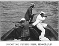 Shooting Flying Fish, Honolulu.png