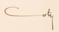 Signature Coty.png