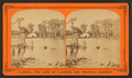 Silver Springs on the Oklawaha River, from Robert N. Dennis collection of stereoscopic views 6.png