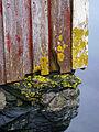 Sjøhuset til Sigvald (987644402).jpg