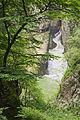 Slovénie - À l'extérieur des grottes de Škocjan (14948282976).jpg