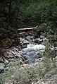 Small Waterfall, Rogue River-Siskiyou National Forest (36796828490).jpg