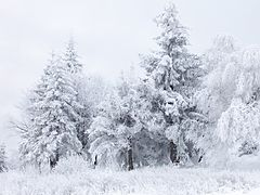Day Snow Pass North Island New Zealand