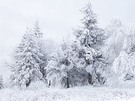 Snow Scene at Shipka Pass 1.JPG