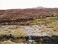 Sodden Moorland - geograph.org.uk - 142981.jpg
