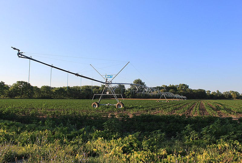 File:Soy Bean Field with Central Pivot Irrigation Sprinkler Summerfield Township Michigan.JPG