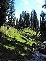 Srinagar - Pahalgam views 73.JPG