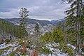 St Blasien Blick vom Aussichtspunkt Luisenruhe.jpg