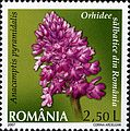 Stamps of Romania, 2007-021.jpg
